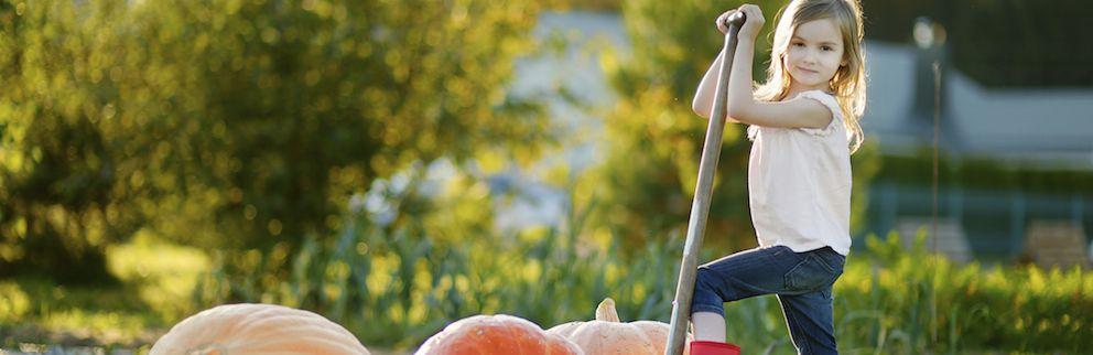 Why Gardening Organically Makes Sense