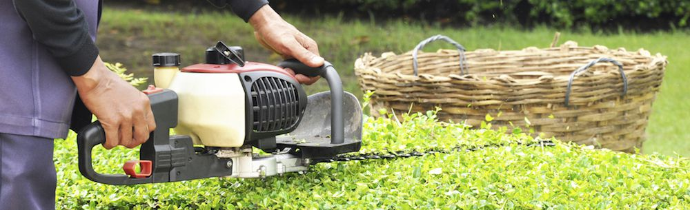 10 Great Reasons To Hire A Professional Gardener